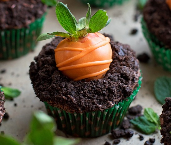Moist Chocolate Carrot Cupcakes